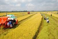 Lập đề án thí điểm cơ chế tích tụ đất đai tại Thái Bình, Hà Nam
