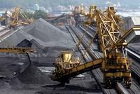 Đề xuất ưu tiên sử dụng than của Tập đoàn Than Khoáng sản cho các hộ tiêu thụ lớn