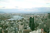 Đà Nẵng gõ cửa nhà đầu tư Osaka (Nhật Bản)