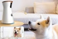 Furbo - camera thông minh cho cún yêu