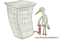 DN ngành vật liệu xây dựng: Từ phục hồi đến tăng trưởng