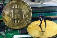 Khó phạt hành vi lách luật thanh toán bằng bitcoin