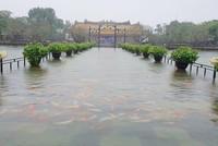 Hàng trăm con cá cảnh ở Hoàng Cung Huế... lên cầu bơi lội!