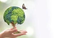 Ghi nhận những nỗ lực bền bỉ và ý nghĩa