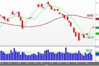 Cổ phiếu dầu khí, ngân hàng tạo lực đẩy cho Index