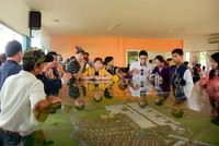 Mở bán Dự án The Viva City