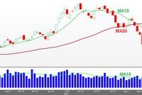 VN-Index bước vào thị trường giá xuống
