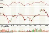 Nhiều nhà đầu tư ngắn hạn bắt đáy