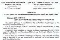 VNPD thông báo gia hạn thời gian chuyển nhượng quyền mua, đăng ký và nộp tiền mua CP lần 3