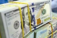 Ngân hàng Nhà nước hạ lãi suất tiền gửi USD của cá nhân về 0%