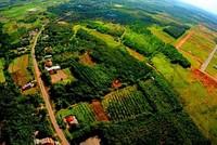 Bình Phước tự ý chia nhỏ 4 khu công nghiệp được Thủ tướng phê duyệt