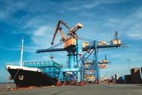 Bí ẩn đối tác mua cảng Đình Vũ: Công ty Việt Xuân Mới là ai?