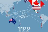 Dự kiến trình Quốc hội phê chuẩn Hiệp định TPP vào tháng 7/2016
