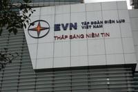Nhiều sếp EVN thu nhập trên 600 triệu đồng một năm