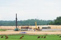 VEC mạnh tay với nhà thầu gian dối tại Dự án Đường cao tốc Đà Nẵng - Quảng Ngãi