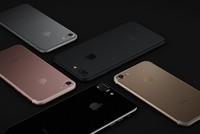 iPhone 7 và 7 Plus màu đen 'cháy hàng' sau 20 phút