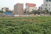 Phó Thủ tướng yêu cầu Hà Nội xử lý vi phạm về đất đai tại huyện Đông Anh