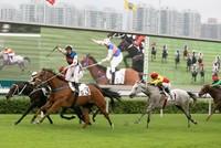 Dự án trường đua ngựa 100 triệu USD ở Bình Phước bị thu hồi