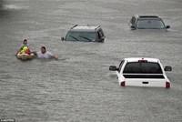 Ôtô ngập lụt ở Mỹ được 'tút' lại để bán như xe mới