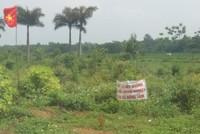 Hà Nội sắp xét xử vụ sai phạm đất đai tại xã Đồng Tâm
