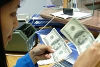 Thị trường ngoại hối đã đi vào ổn định