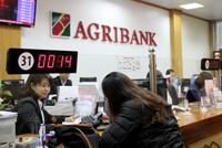 Năm 2015, Agribank dự kiến đạt lợi nhuận trước thuế trên 3.500 tỷ đồng