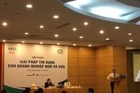 Ít có hệ thống ngân hàng nào trên thế giới dám dũng cảm đồng hành với doanh nghiệp nhỏ như ở Việt Nam