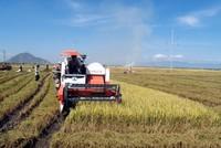 Hỗ trợ để hợp tác xã nông nghiệp tồn tại trong môi trường cạnh tranh