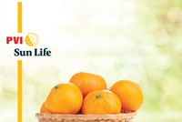 PVI Sun Life ra mắt hai sản phẩm mới