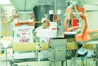 Mavin Austfeed đưa vào vận hành Nhà máy Chế biến Thức ăn Thủy sản tại Hưng Yên