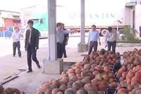Vietnam Holding đã nắm trên 8% cổ phần Nafoods