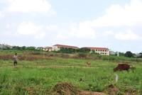 """Quảng Ngãi sẽ xử lý các dự án """"đứng hình"""" trước ngày 31/1"""