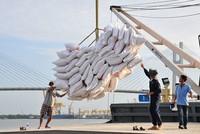 Thu gần 220 triệu USD từ xuất khẩu gạo ngay tháng đầu năm