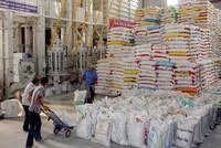 Xuất khẩu gạo Campuchia có thể vượt Việt Nam