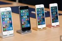 Giá iPhone 6 và 5s tiếp tục giảm sâu, chỉ còn vài triệu đồng