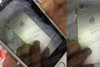 iPhone 7 lộ ảnh với camera lớn hơn 6s