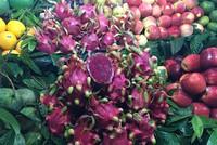 Thanh long ruột đỏ từ nhà vườn ra Hà Nội giá đắt gấp 30 lần