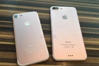 iPhone 7 được bán ra vào ngày 23/9