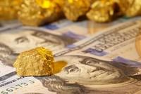 Sáng 13/9, vàng tăng bằng mức giảm hôm qua, tỷ giá trung tâm tiếp đà tăng