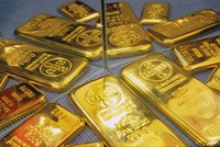 Sáng 12/1, giá vàng ổn định quanh ngưỡng 36,6 triệu đồng/lượng, USD trên thị trường tự do giảm