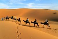 5 trải nghiệm trên sa mạc không nên bỏ lỡ ở Dubai