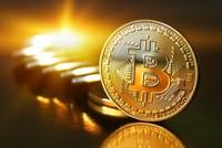 Dân 'cày' bitcoin tiết lộ sốc: Hôm nay là tỉ phú, mai lại trắng tay