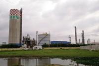 Đạm Ninh Bình: Nhà máy 12.000 tỷ, hoạt động 4 năm lỗ... 2.000 tỷ