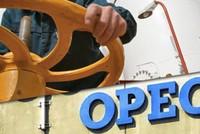 Indonesia tái gia nhập OPEC