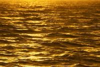Giá vàng ngày 16/11: Giới đầu tư tìm tới vàng sau tin tức từ Paris