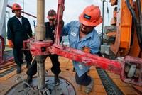 Nhiều giếng dầu bắt đầu được kích hoạt khi giá vượt 50 USD/thùng