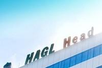 HAG bất ngờ hủy việc mua 10 triệu cổ phiếu quỹ
