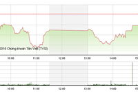 """Phiên chiều 25/11: Cổ phiếu đầu cơ """"náo loạn"""" thị trường"""
