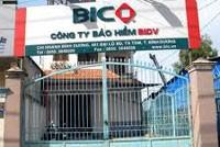 Năm 2013, BIC sẽ chốt cổ đông chiến lược ngoại