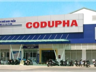 Sau 3 năm cổ phần hóa, Codupha vẫn chưa có kế hoạch lên sàn